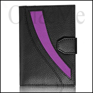 celebrity-mens-passport-holder