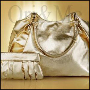 metallic-bag
